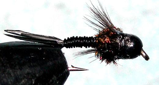 Tungsten Blackbead Black Pearl trout fly