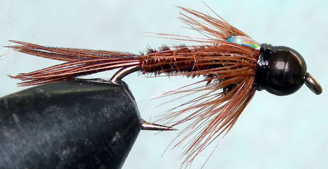 Tungsten Blackbead Flashback Pheasant Tail trout fly