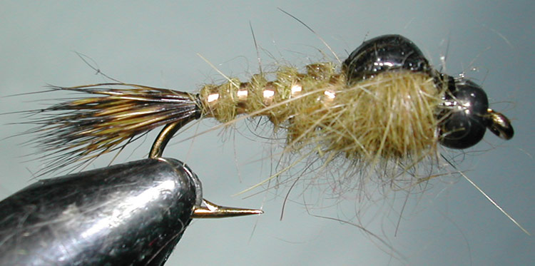 Tungsten Blackbead Hares Ear olive trout fly