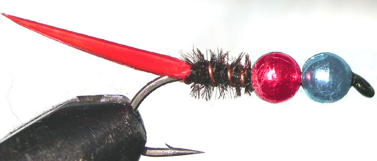 Tungsten Blue&Red peacock trout fly