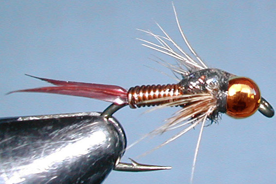 Tungsten Copperbead Copperjohn trout fly