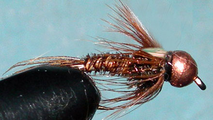 Tungsten Copperbead Flashback Pheasant Tail trout fly