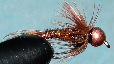 Tungsten Copperbead Pheasant Tail trout fly