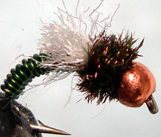 Tungsten Copperbead Z Wing green trout fly