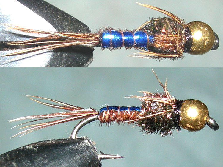 Tungsten Goldbead Pheasant Tail Blue Flashback trout fly