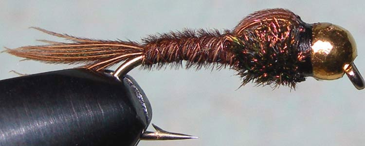 Tungsten Goldbead Pheasant Tail No Hackle trout fly