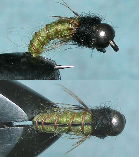 Tungsten Nickelbead Flashback Caddis Olive trout fly