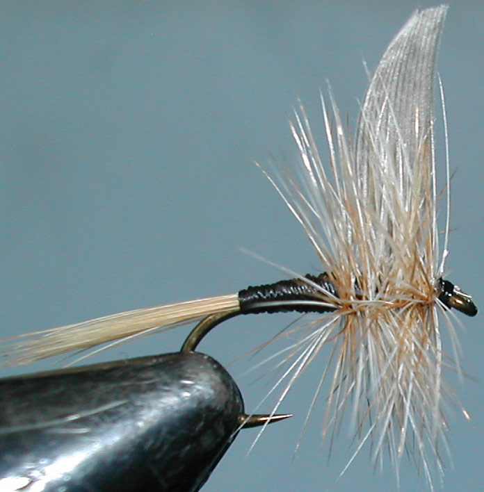 Twilight Beauty blonde trout fly