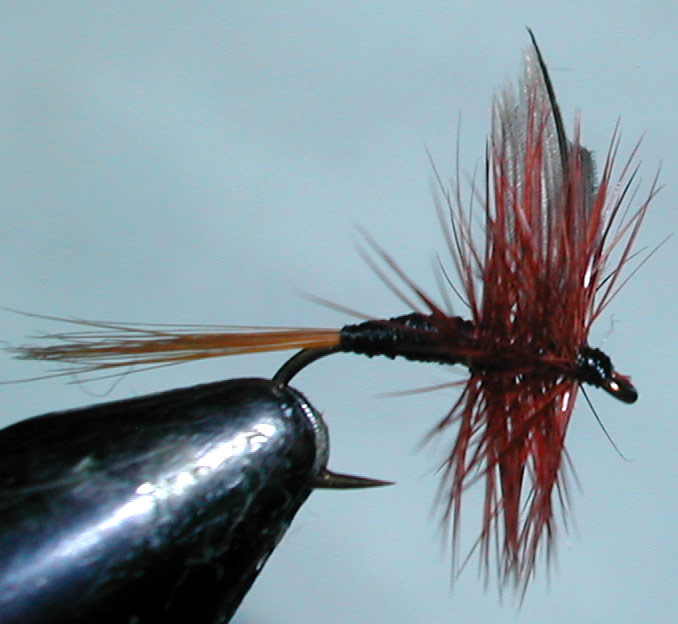 Twilight Beauty redhead trout fly