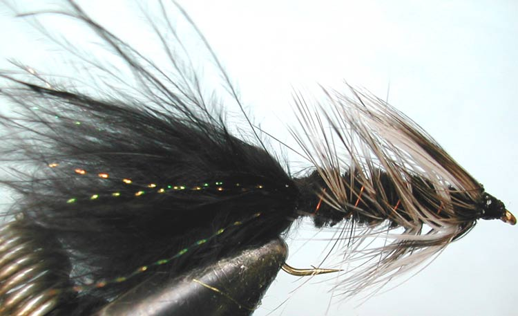 Woolly Bugger 3XL grizzly&black trout fly