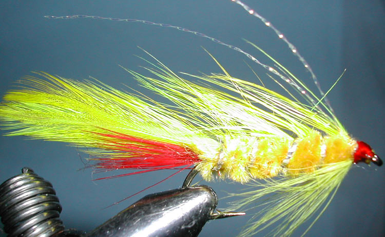 Yellow Lady trout fly